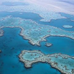 Big Data - Great Barrier Reef
